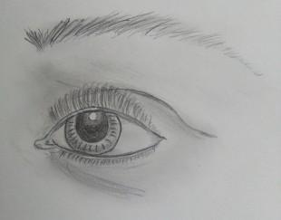 Auge II